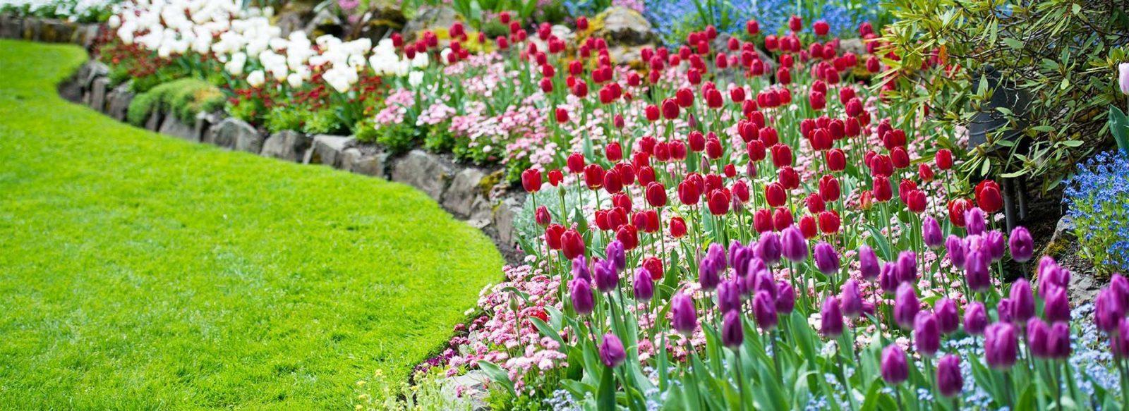 The Four Basic Principles Of The Good Garden Designer