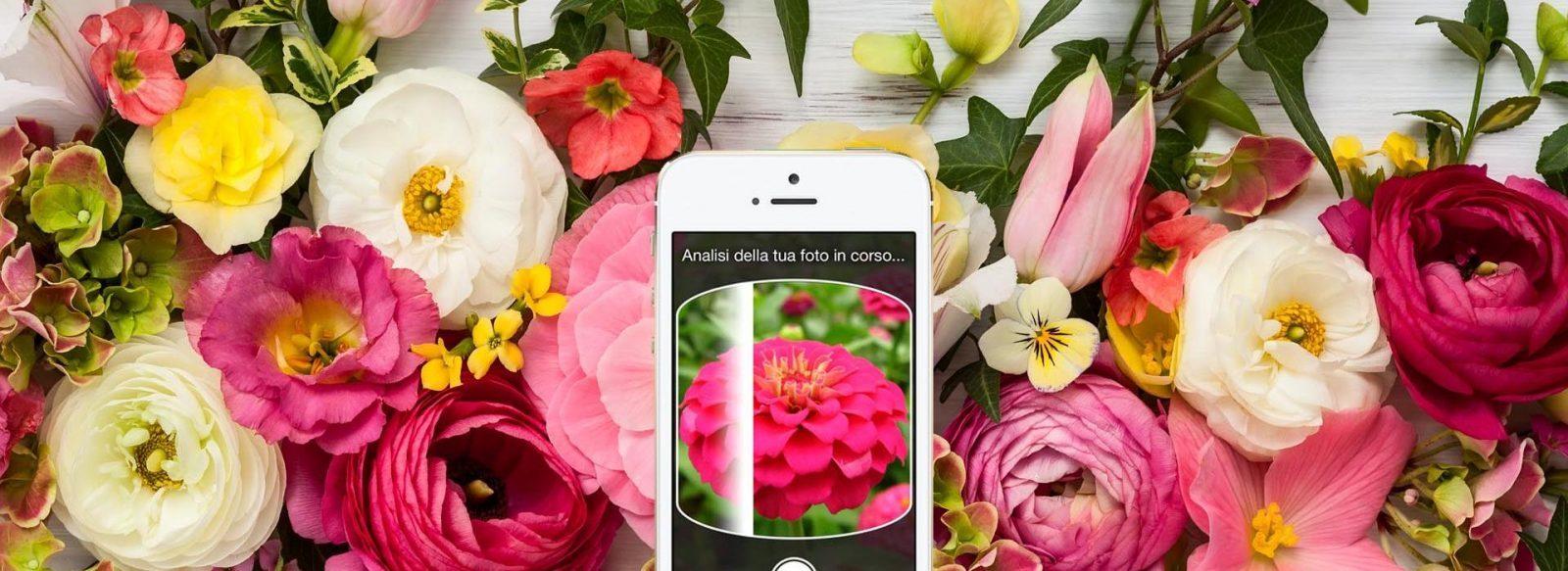 flower design enters the digital age: like that garden - italian
