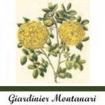 Giardinieri Montanari