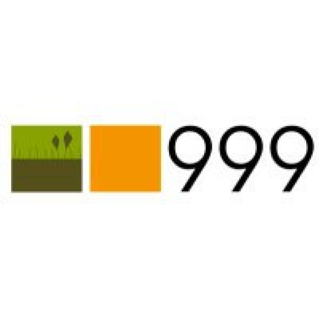 Studio 999