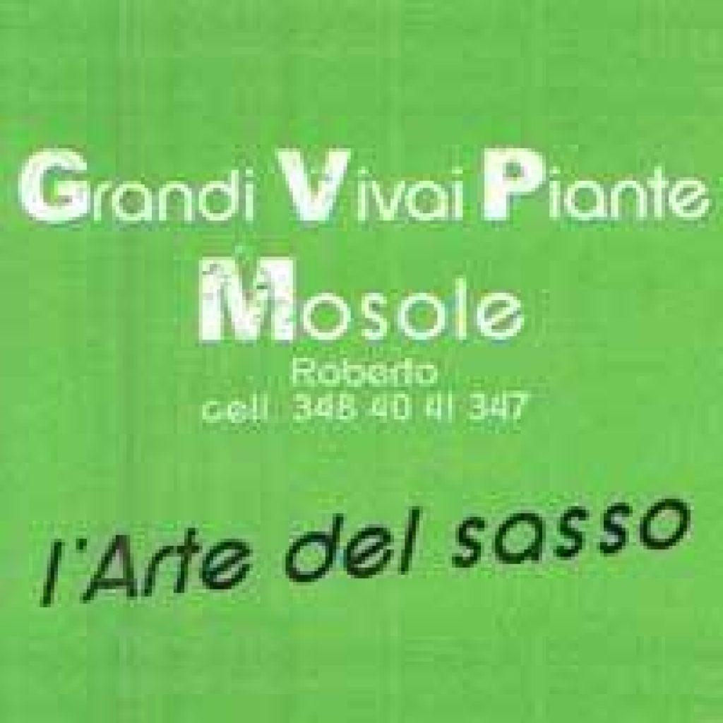 Vivai Mosole