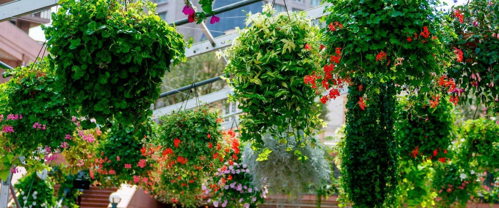 Trendy il garden design il lusso della quiete with for Design giardini