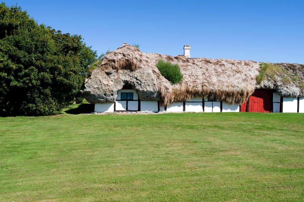 l 39 architettura vernacolare nei tetti di alghe della