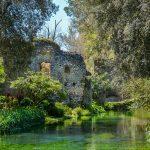 giardino di ninfa italian design institute