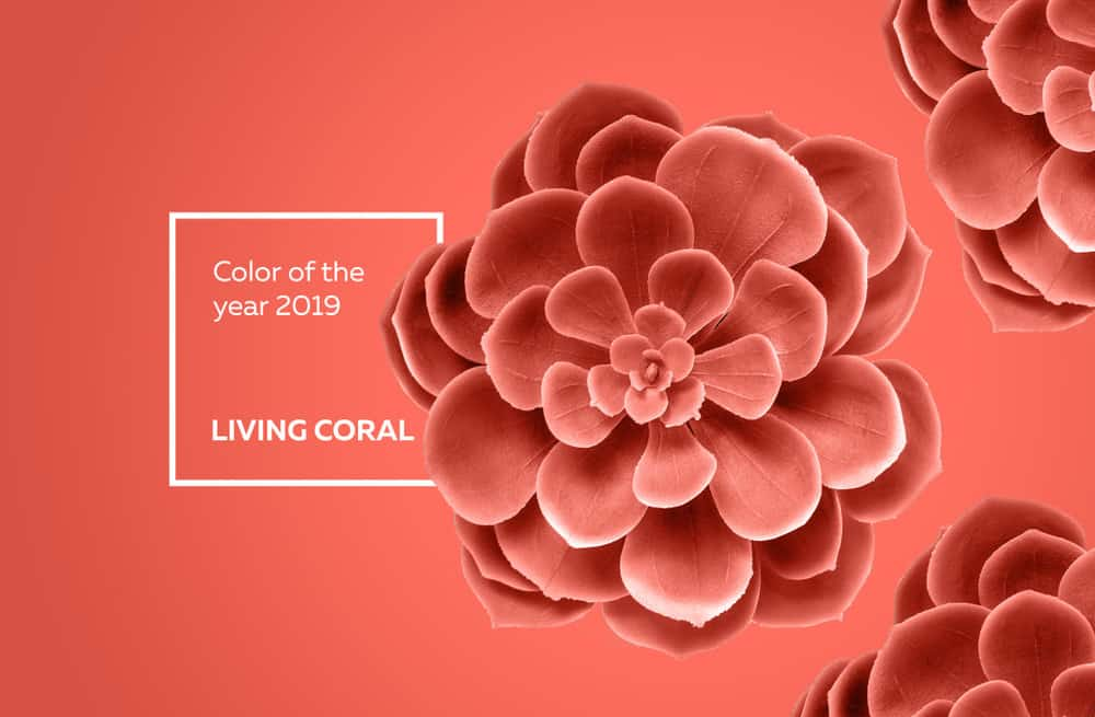 living coral il colore pantone 2019. Black Bedroom Furniture Sets. Home Design Ideas