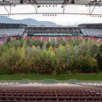 foresta-nello-stadio-idi-1