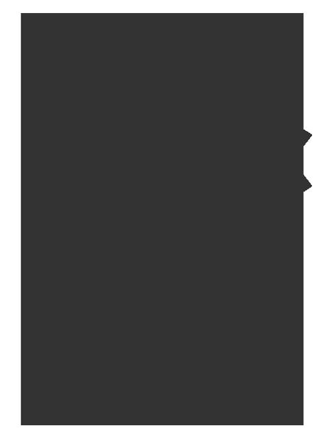 Certificazione Rhino